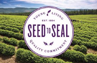healing_garden_seed_to_seal