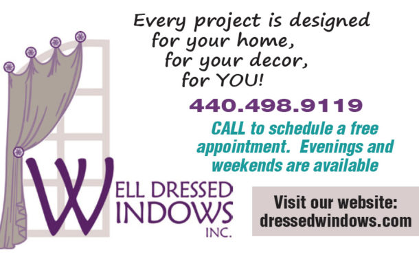 Have a Problem Window(s)? ...are you tearing your hair out over what to do? - Well Dressed Windows, Inc