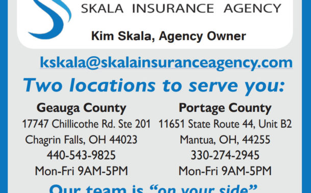 Which Would You Prefer...Institution or Home Health Care?  -  Skala Insurance Agency LLC